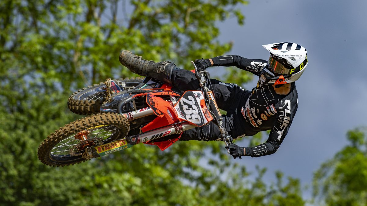 Lion Florian - WZ Racing